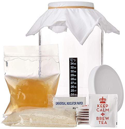 1 Gallon Kombucha Starter Kit - with SCOBY, Sugar, Tea, Glass Jar, Ph Strips and thermometer (Deluxe Kit)