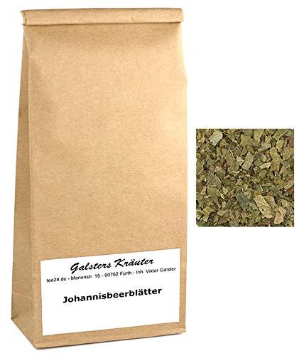 100g Johannisbeerblätter- Tee Johannisbeere Cassis | Galsters Kräuter