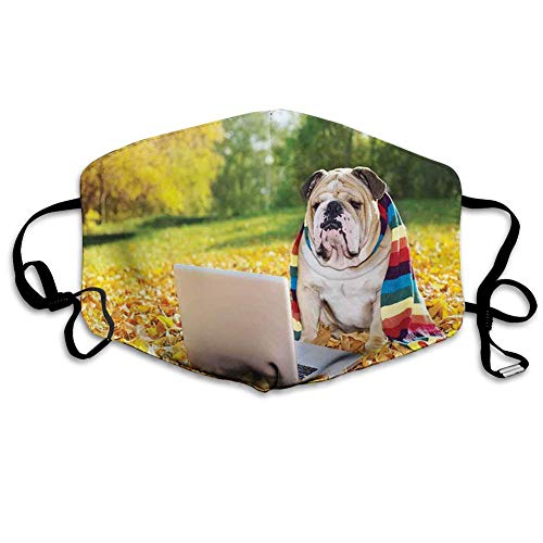 Bequeme Winddichte Maske, englische Bulldogge, Hund im Park mit einem Laptop und regenbogenfarbenem Schal lustige Fotografie, Mehrfarbig