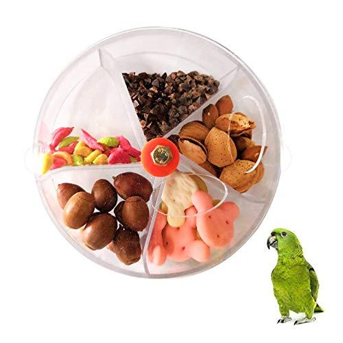 Comedero para Pájaros Estación de Alimentación Loro Rueda de Alimentos Alimentador Pájaros Juguete de Forraje Pájaros Transparente Alimentador Comida Loros Contenedor Comida Pájaros (Color Ale