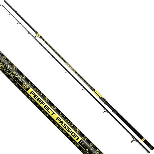 Black Cat Premium Welsrute Perfect Passion XH-S Angelrute vielseitig Einsetzbar mit IM6 Blank Wels Angeln Wallerrute in 5 Längen, Schwarz-Gelb, 3,20 m