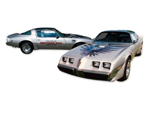 1979 Pontiac Firebird Trans Am 10th Anniversary Edition Decals & Stripes Kit - Silver