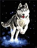 Pintura Por Númerosadultos Bricolaje Acrilico Kits Pintura Al Óleo Cumpleaños Creativo Regalos Por Niños Principiantes Lobo 40X50Cm Con Marco