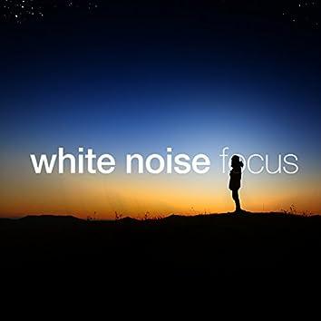 White Noise: Focus