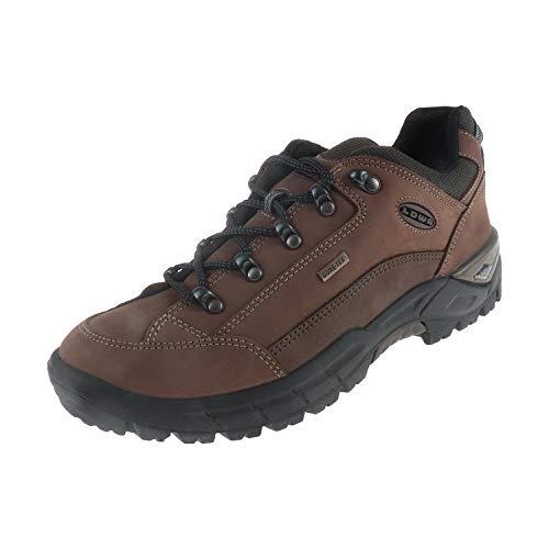Lowa dames schoenen wandelschoenen wandellaarzen trekkingschoenen Renegade GTX LO Ls taupe 3209074655 bruin