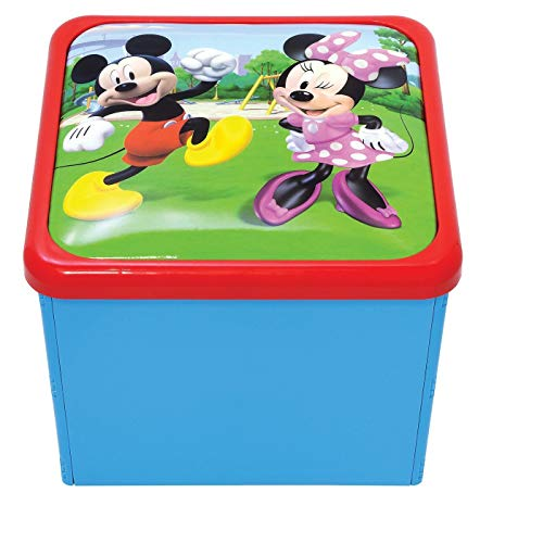 DISNEY JUNIORS Mickey Mouse et Le Roadster Racers Sit n Store Cube