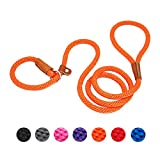 lynxking Dog Leash Rope Slip Leads Strong Heavy Duty No Pull Training Lead Leashes for Medium Large...