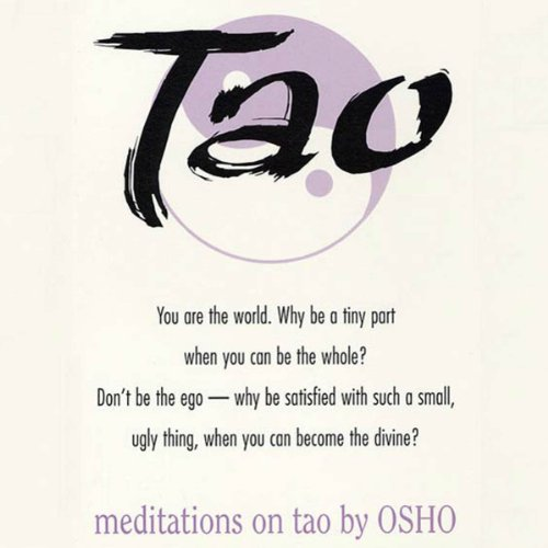 Meditations on Tao audiobook cover art