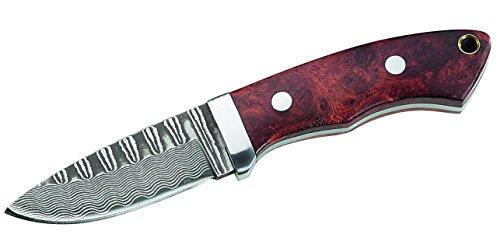Herbertz Erwachsene Damaszener Messer, 71 Lagen, Wurzelholz-Schalen, Lederscheide Gürtelmesser, Mehrfarbig, One Size
