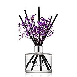 10 Best Oil Reed Diffusers
