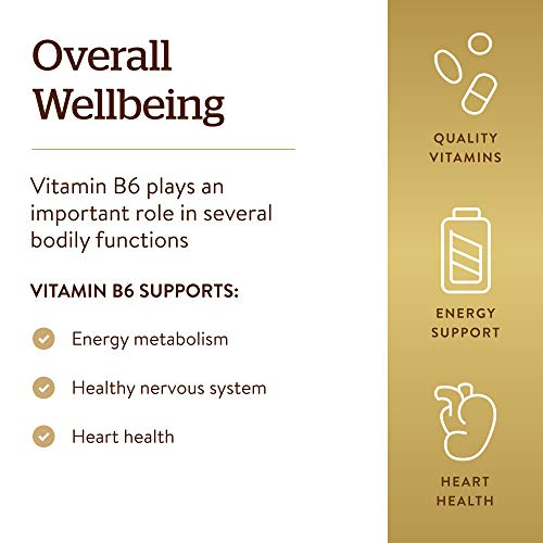 Solgar Vitamin B6 100 mg, 100 Tablets - Supports Energy Metabolism, Heart Health & Healthy Nervous System - B Complex Supplement - Vegan, Gluten Free, Dairy Free, Kosher - 100 Servings