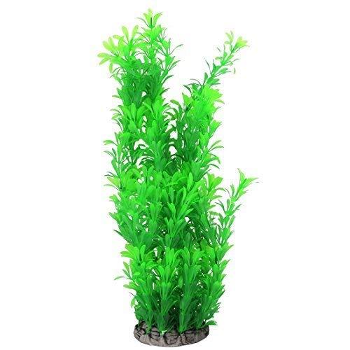 Planta De Acuario 36cm  marca ZYL-YL
