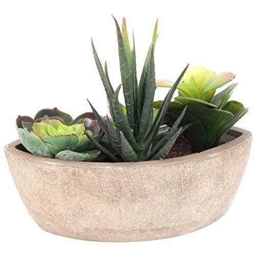 PRETYZOOM Kunstpflanze im Topf Künstliche Sukkulenten Pflanzen Set Grün Faux Töpfe Kaktus Bonsai Töpfchen Kunstblumen Büro Tischdeko für Schreibtisch Wohnzimmer Badezimmer Deko