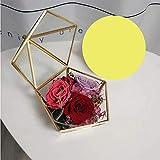 NSCHJZ Ewige Blume, Immerwährende Rose Tanabata Valentinstag kreative Geschenk Glasabdeckung...