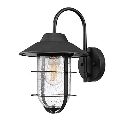Globe Electric Matthews 1-Light Outdoor Indoor Wall Sconce, Matte Black, Seeded Glass Shade 44333
