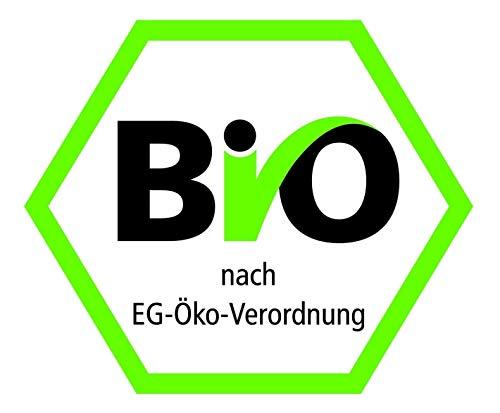 Erdschwalbe BIO Reisprotein 1kg-Beutel - 4