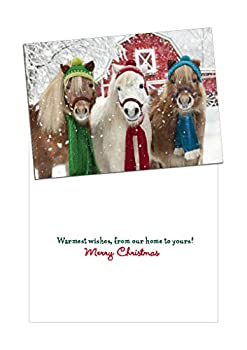 Avanti Press Christmas Cards with Envelopes Holiday Horses Pack of 10  703398