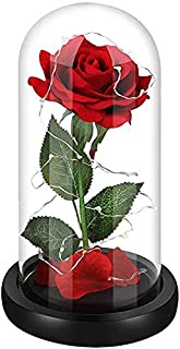 Beauty and The Beast Rose,Red Silk Rose Flower and Led Light in Glass Dome,Decoration Home,Amazing and Romantic Gifts for Women,Hallowen, Christmas, Wedding,Valentine's Day, Anniversary and Birthday