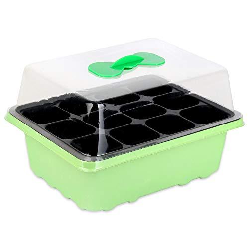 Schramm® vivero de Interior Caja de 1, 2 o 3 Piezas 38x24x18 cm Mini Conjunto de vivero de Invernadero Conjunto de vivero Bandeja de vivero de Invernadero con Tapa y ventilación, Anzahl:1 Stück