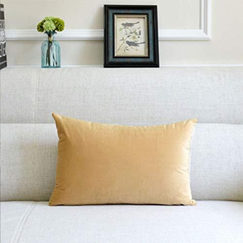 Almohada de color sólido para el hogar, cojín grande, accesorios para el coche, almohada lumbar, simple, albaricoque, 40 x 60 cm