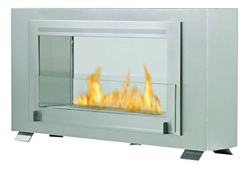 Why Should You Buy Eco-Feu Montreal 2-Sided Fireplace, Stainless Steel