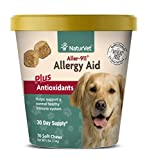 Top 10 Dog Allergy Medications