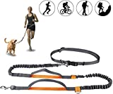Powey Hands Free Retractable Dog Leash 5ft-8ft with Dual Bungees for Puppy, Small