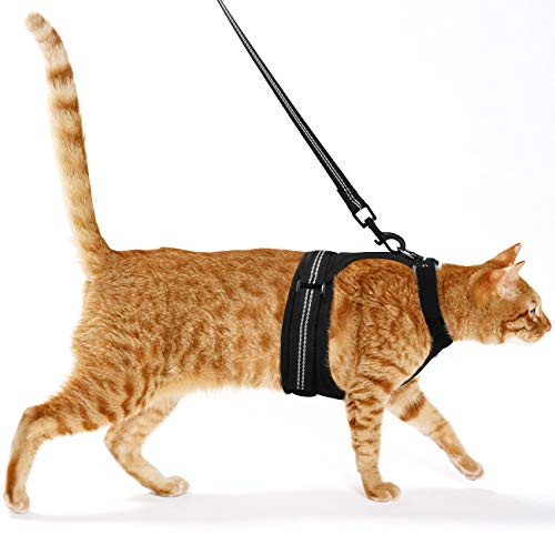 Pawaboo Cat Harness and Leash, Adjustable Soft Mesh Vest Walking Jacket Harness Leash, Walking Escape Proof Vest Harness with Nylon Webbings Metal Swivel Clip for Small Cat Dog, Extra Small, Black