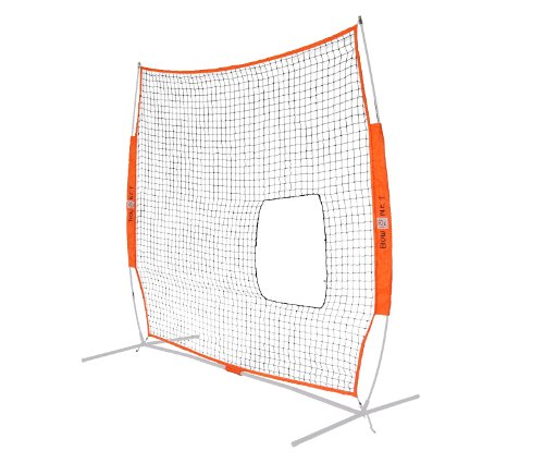 Bow Net Fastpitch Pitch Through Screen Net