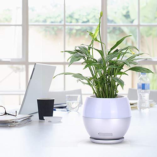 Chris zhang Smart Creative Music Blumentopf mit kabellosem Bluetooth-Lautsprecher, Touch-echte Pflanze zum Spielen von Klavier, Farb-Atmosphäre Licht Lebensstil