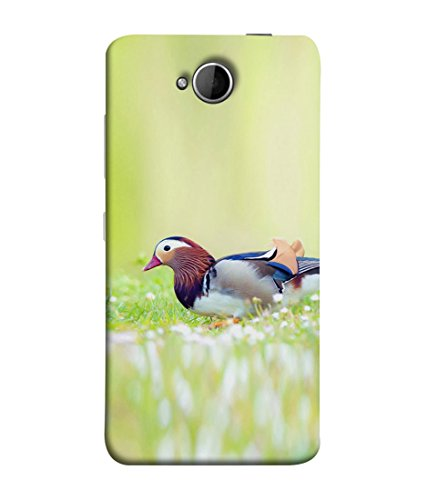 PrintVisa Bird of Paradise 3D Hard Polycarbonate Designer Back Case Cover for Microsoft Lumia 650 :: Microsoft Lumia 650 Dual SIM