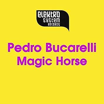 Magic Horse