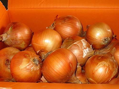 淡路島産 たまねぎ L,2Lサイズ 10kg詰め 玉ねぎ 玉葱