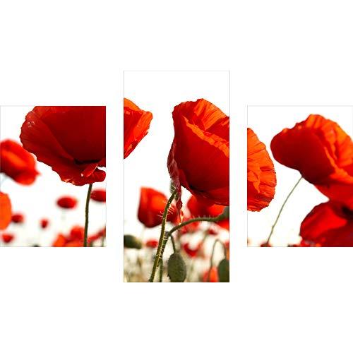 decorwelt | Dreiteiliges Wandbild 3 Teilig Acrylglasbilder Acryl Glasbild Blumen Rot 90x60 cm Wandbilder Wohnzimmer Esszimmer Deko Wanddeko