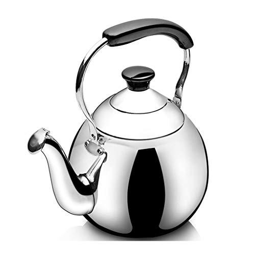 Bouilloire Cuisinière à gaz cuisinière à Induction Universelle Grande capacité MUMUJIN (Capacity : 3L)