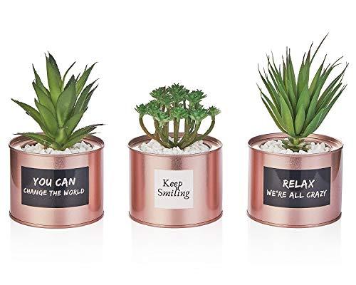 Artificial Succulent Plants for Women Desk - Fake Desk Plant Set - Rose Gold Office Decor Faux Succulents in Pots - Mini Succulent Plant Decor for Bedroom Bathroom Bookshelf Dorm Accessories 3-Pack