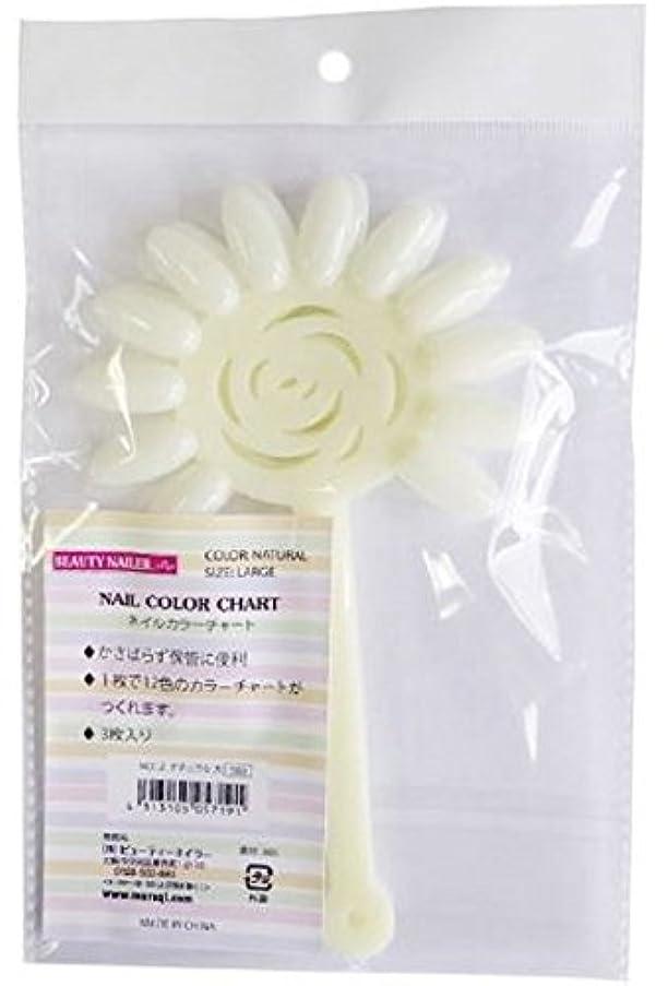 床を掃除する抵抗力がある単にBEAUTY NAILER ネイルカラーチャートNCC-2 ナチュラル大