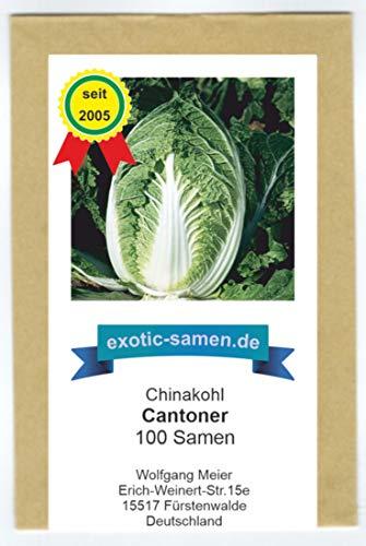 Chinakohl - Cantoner - 100 Samen