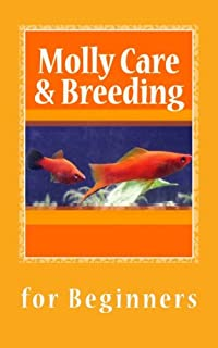 Molly Care & Breeding: A Beginner's Guide to Mollies