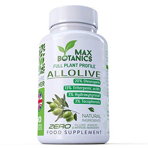 Olivenextrakt Blatt & Frucht – Vollextrakt – Oleuropein – Hydroxytyrosol – Triterpene – Tocopherole (No Fillers or Binders) (90 Kapseln pro Dose)
