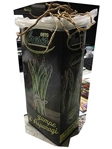 10 pz Zampe D'asparago SELVATICO - Pronti da piantare