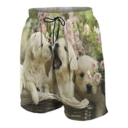 De Los Hombres Casual Pantalones Cortos,Cachorro Rojo pequeños Cachorros de Golden Retriever en Canasta Verano Rosa jardín de Rosas Amarillo,Traje de Baño Playa Ropa de Deporte con Forro de Malla