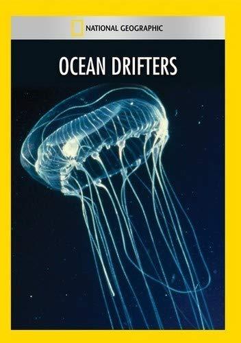 Ocean Drifters [Importado]