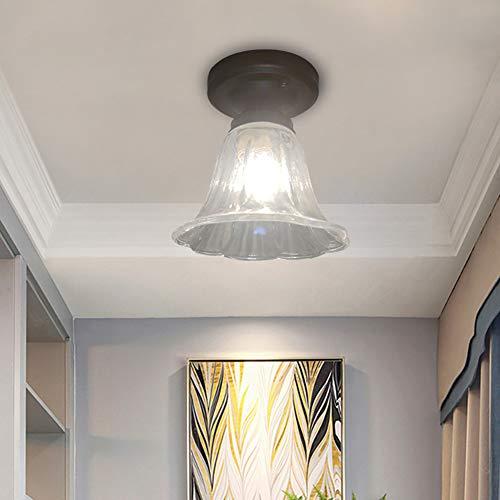 Luckly Moderno Plafón Rústico Lámpara de Techo de Vidrio Metal para Escaleras Balcón Salón Comedor Dormitorio luz ∅15*H17CM Transparente Vidrio Pantalla Estilo Elegante Plafón de Techo E27