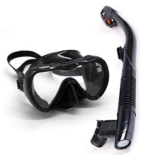 TAKEBEST Snorkel Set, Anti-Fog Snorkel Diving Mask Panoramic Wide View Tempered Glass, Easy Breathing Anti-Leak Dry Top Snorkel, Professional Snorkeling Set for Adult Youth (Black)