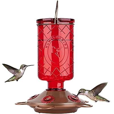 BOLITE 18005 Hummingbird Feeder, Glass Hummingbird Feeders, 5 Feeding Stations, 22 Ounces, Red Bottle
