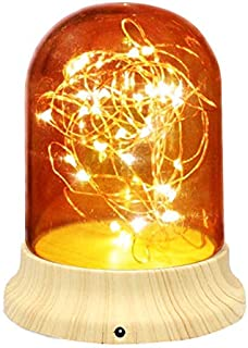 Glass Dome Lamp with Wood Base, Romantic Fairy Starry Light Ideal for Decoration Anywhere(Warm Yellow)