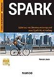 Spark : Valorisez vos données en temps réel avec Spark ML et Hadoop (Etudes, développement, intégration)