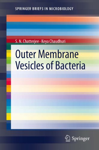 Outer Membrane Vesicles of Bacteria (SpringerBriefs in Microbiology)