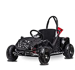 in budget affordable FITRIGHT 2020 Baja-X 48V 1000W Brushless Electric Go-Kart, 3 Speeds, Up to 32 km / h…